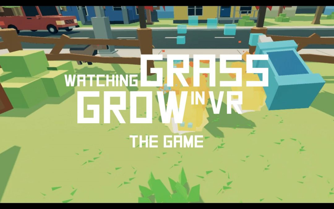 VR games studio Pillow Head Games wins by watching grass grow